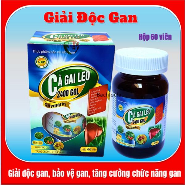 Viên uống giải độc gan Cà Gai Leo 2400 Gol,giúp giải độc gan, tăng cường chức năng gan, hạ men gan- Hộp 60 viên- HSd năm 2023
