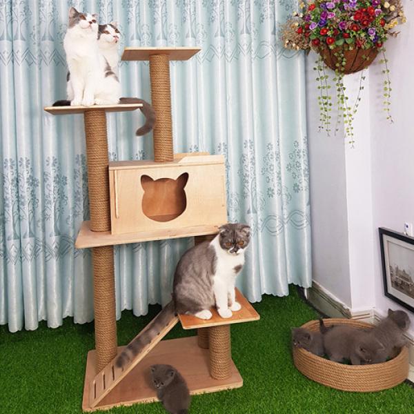 [HCM]Nhà Cây Cho Mèo 2 Tầng Hiện Đại CH005