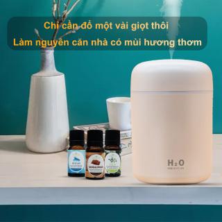 Tinh dầu tạo ẩm10ml, tinh dầu thơm chai tinh dầu thiên nhiên cao cấp giúp điều hòa sức khỏe, giảm căng thẳng, kích thích các giác quan giúp ngủ ngon, đuổi muỗi 1