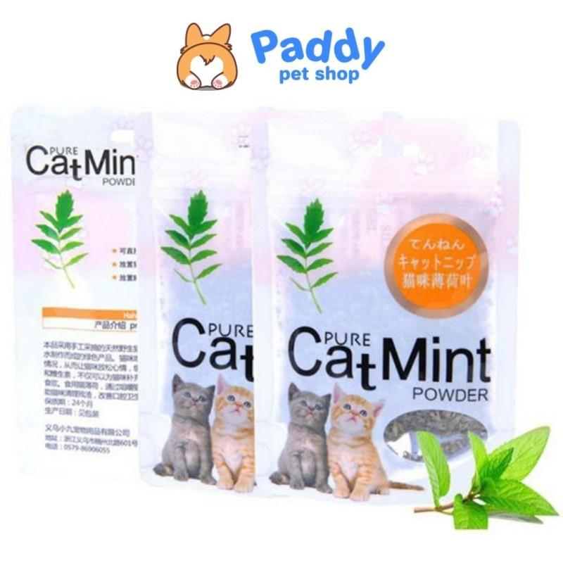 Cỏ mèo, cỏ bạc hà thư giãn cho mèo - Catmint/Catnip