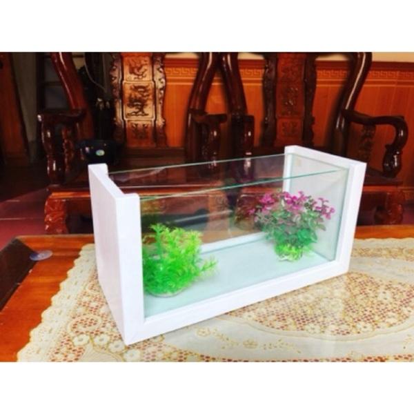 Bể cá cảnh khung gỗ size 40cm kèm Đèn và Lọc thác trang trí nhà cửa