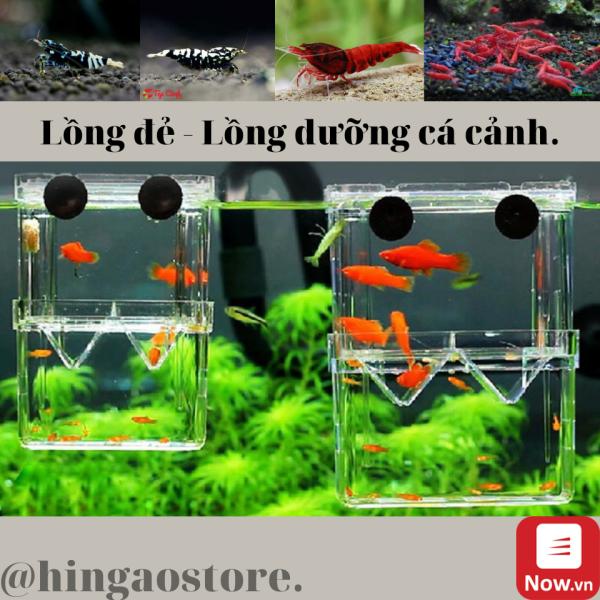 Lồng dưỡng, lồng đẻ cho cá cảnh, tép size 10x7x13cm - size 17,5x8,5x15 - Phụ kiện cá cảnh   Hingaostore.