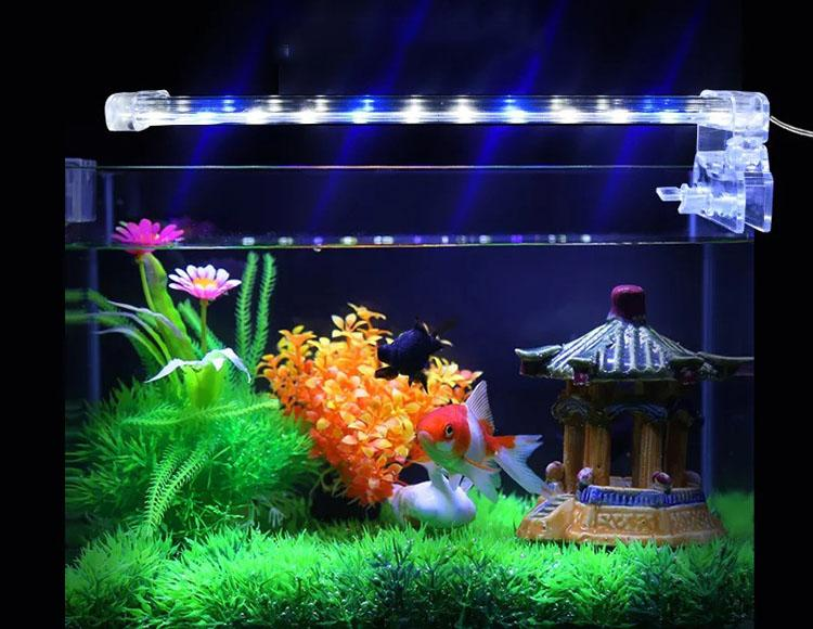 Đèn LED D40 Lắp Cho Bể Cá - Đèn Led Trang Trí - Thiết Kế Gọn Nhẹ-Tinh Tế-Tạo Ra Ánh Sáng Tuyệt Đẹp Trong Không Gian Bể Cá Trang Trí-Đang Được Ưu Đãi 50%