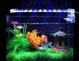 Đèn LED D30 Lắp Cho Bể Cá - Đèn Led Trang Trí - Thiết Kế Gọn Nhẹ-Tinh Tế-Tạo Ra Ánh Sáng Tuyệt Đẹp Trong Không Gian Bể Cá Trang Trí-Đang Được Ưu Đãi 50% thumbnail
