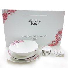Ôn Tập Bộ Bat Đĩa Sứ Xương Hoa Đao Nhật Bản Sony Sony
