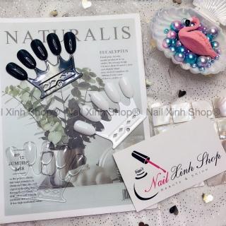 Set 50 móng tay giả hình vương miện, móng tay giả tập sơn, trưng bày, phụ kiện nail chuyên dụng thumbnail