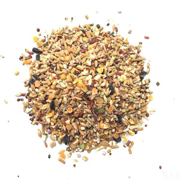5Kg ngũ cốc dinh dưỡng cho gà chọi trên 14 loại hạt và 2 loại cám viên - rab.store