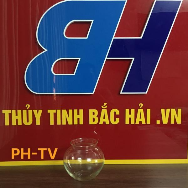 Mẫu Bình Bèo Nuôi Cá -TV Bình Thủy Tinh Và Hũ Thủy Tinh Ngâm Rượu Cao Cấp SX tại Việt Nam