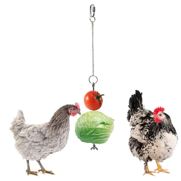 Chicken Veggies Skewer Fruit Holder for Hens Pet Chicken Vegetable Hanging Feeder Toy for Hens Large Birds- Silver