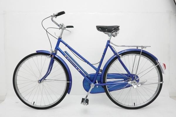 Mua Huyền thoại xe đạp Phượng Hoàng cánh chả
