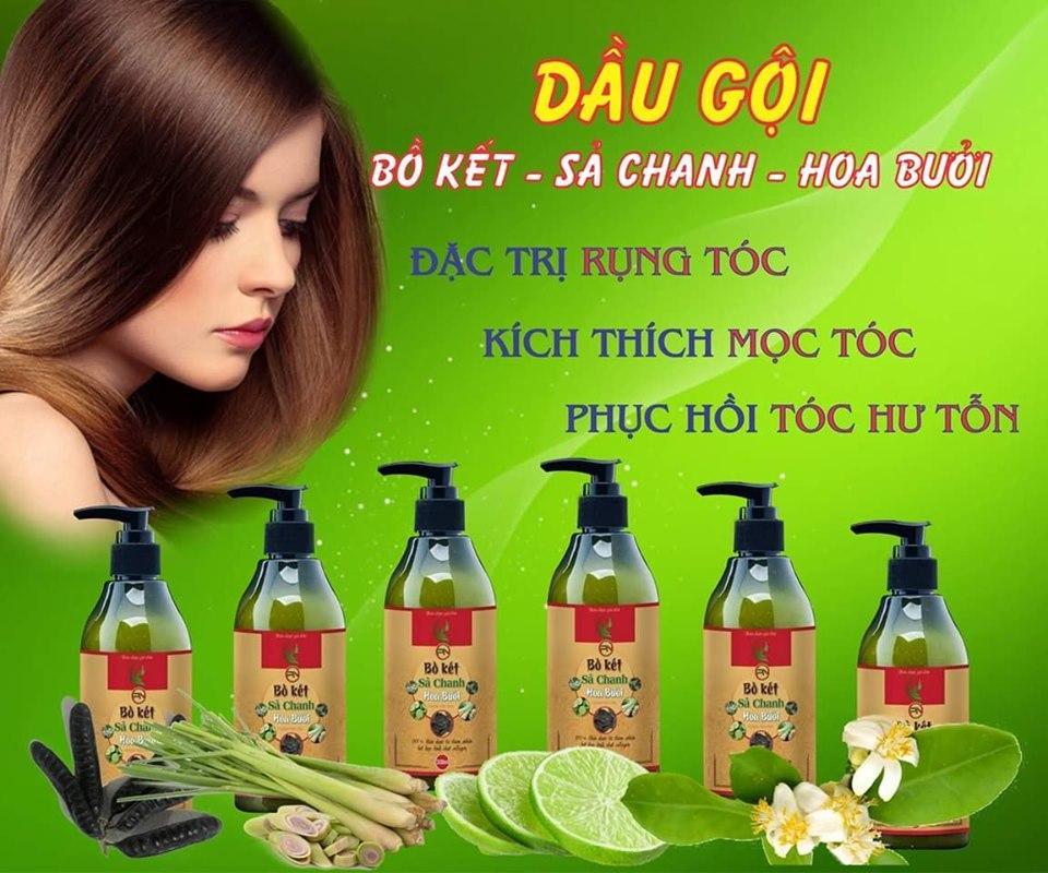 Dầu Gội Bồ Kết Sả Chanh Hoa Bưởi trị gàu, chống rụng tóc giá rẻ