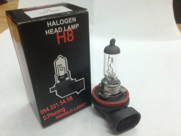 Bóng H8 12V 55W. Bóng đèn ô tô World Light. Chuyên các loại bóng đèn halogen giá sỉ