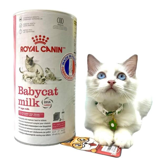 [Royal Cannin] Sữa Bột Cho Mèo Baby Cat Milk Siêu Dinh Dưỡng Hộp 300G