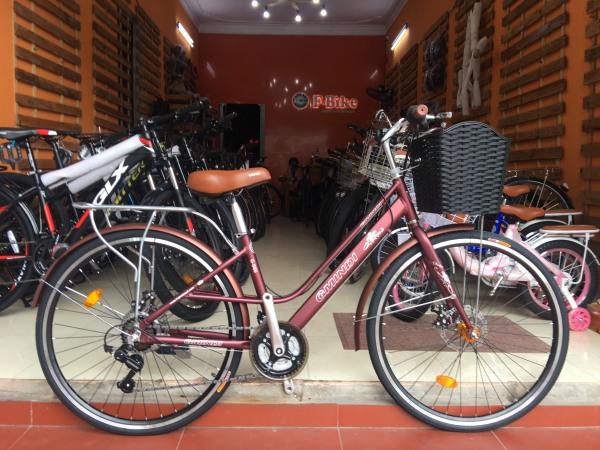 Phân phối Xe đạp mini GMINDI