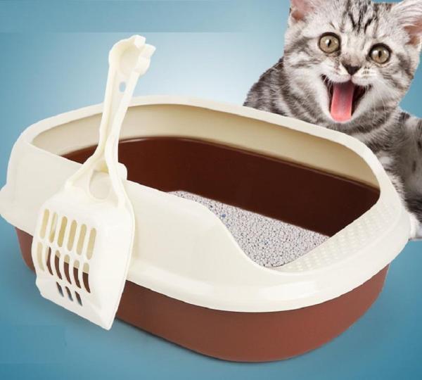 Khay vệ sinh cho mèo ,chất liệu tốt, kích thước rộng, có vành xung quanh, cho mèo vệ sinh không bị bắn ra ngoài.