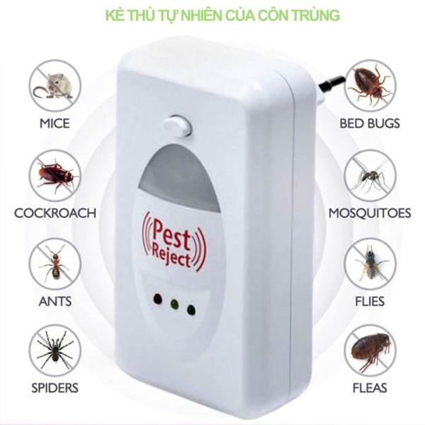 Máy Đuổi Côn Trùng Pest Reject Bằng Sóng Siêu Âm đuổi chuột nhà, bọ cánh cứng, muỗi, bọ chét, ruồi, châu chấu, kiến, kiễn gỗ v.v. an toàn cho con người và vật nuôi.