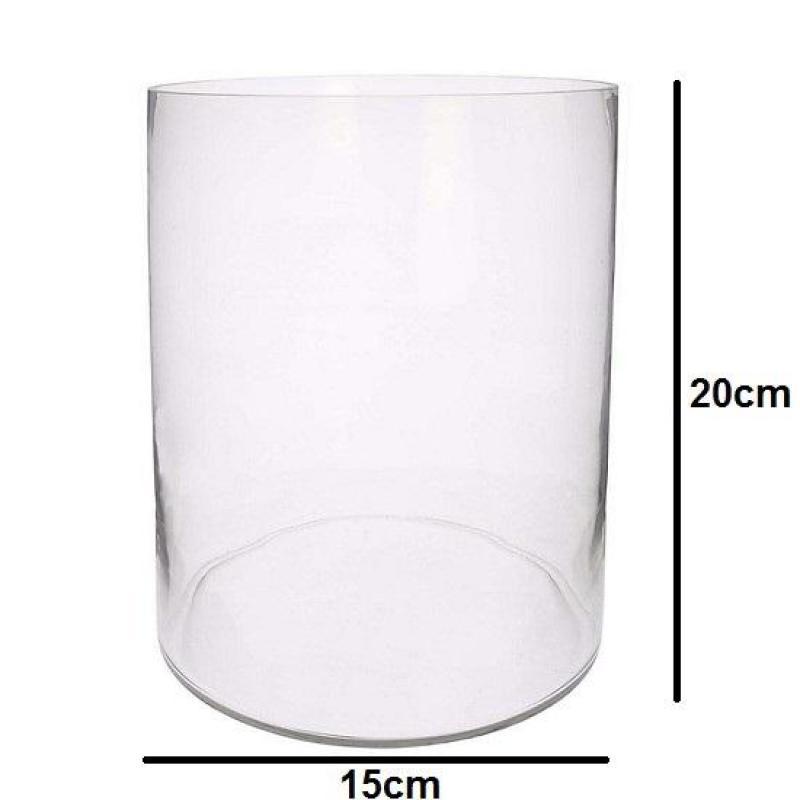 Bể cá mini , chậu thủy tinh trụ tròn 15x20cm