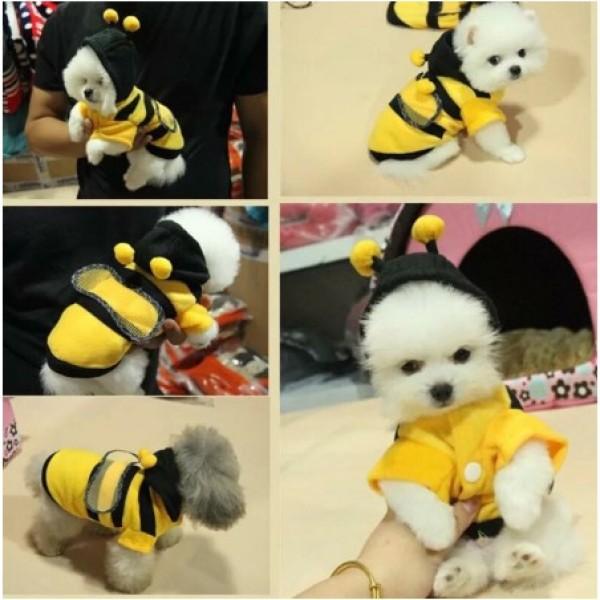 Áo Sweater ong vàng giữ ấm, làm đẹp cho thú cưng chó mèo...
