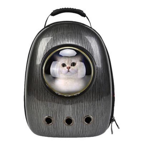 Balo vận chuyển chó mèo