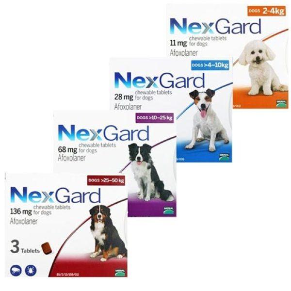 1 viên NexGard giúp loại bỏ ghẻ, ve, rận, bọ chét cho chó từ 10-25kg