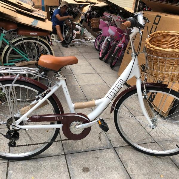 Phân phối Xe đạp người lớn Totem 24