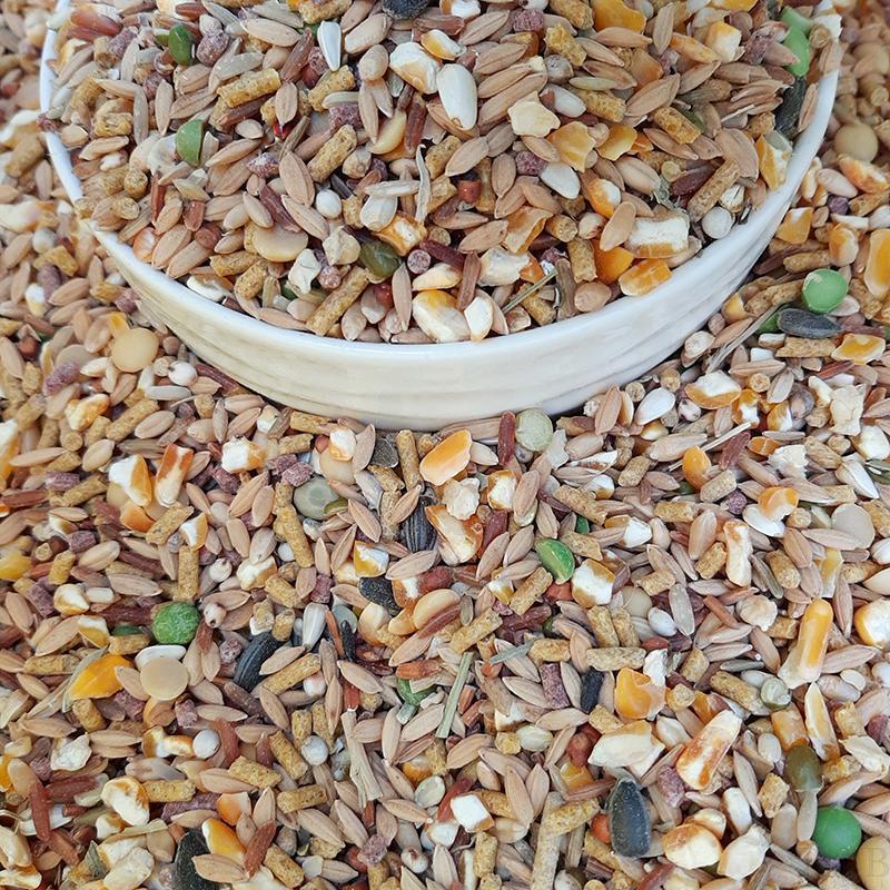 2kg ngũ cốc dinh dưỡng cho gia cầm trên 14 loại hạt và cám viên - rab.store
