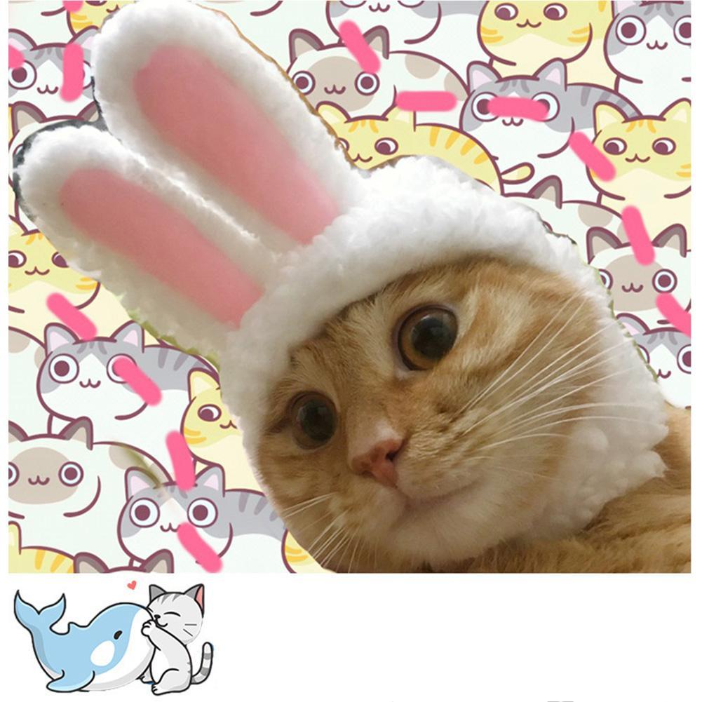 Outop แมวสัตว์เลี้ยงน่าสนุก Warm รูปร่างกระต่ายหมวกตกแต่ง Cosplay Photo Props By Outop Store.