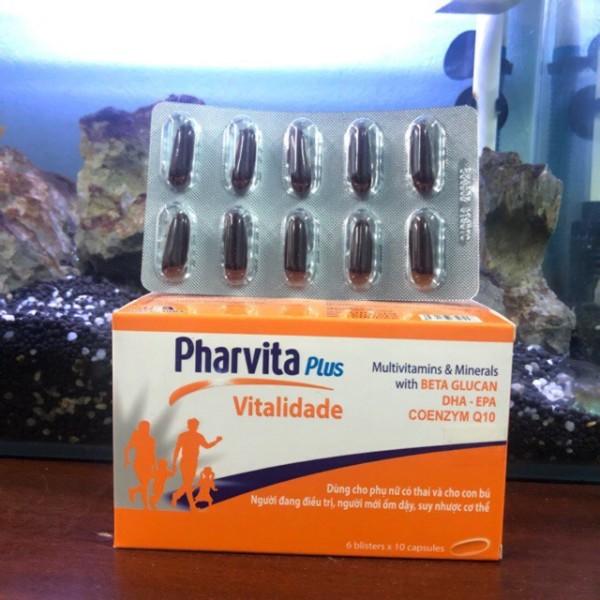 Pharvita Plus bổ sung Vitamin và khoáng chất (lọ 30v vĩ 60v), cam kết sản phẩm đúng mô tả, chất lượng đảm bảo cao cấp