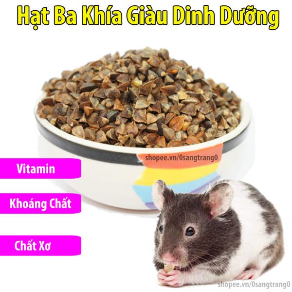 100g Hạt Ba Khía Bổ Dưỡng Cho Hamster-Rat-Đuôi Mập