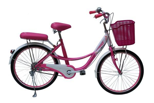 Mua Xe Đạp thời trang Smnbike CL 24