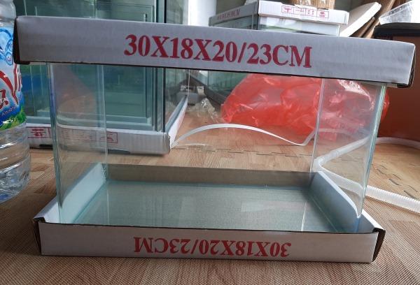 Bể cá mini kính đúc 30x18x20 cm