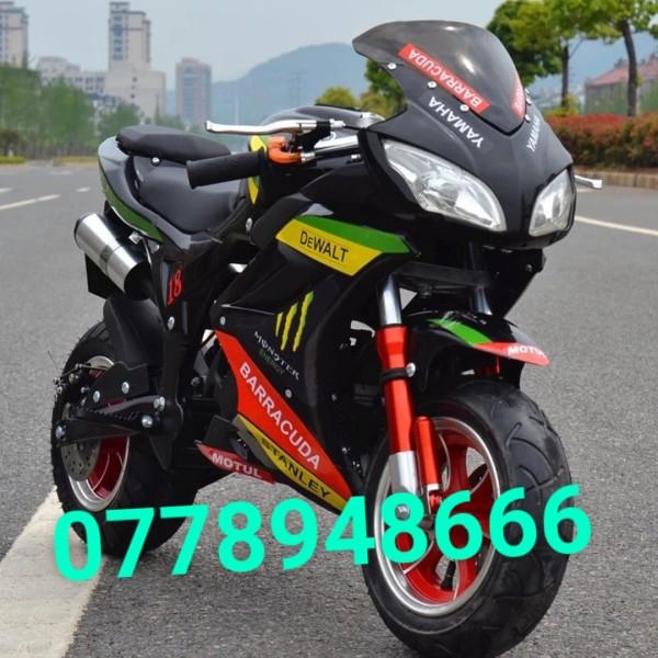 Phân phối Xe moto mini 50cc - R15 v3 2021 -xe ruồi - xe tam mao -mẫu mới CÓ ĐỀ LỐP BỰ KHÔNG RUỘT 2 thì pô kiêu như xipo -tặng 1 chai nhớt - xe moto mini 50cc - moto -  moto mini -  xe moto - xe máy 50cc