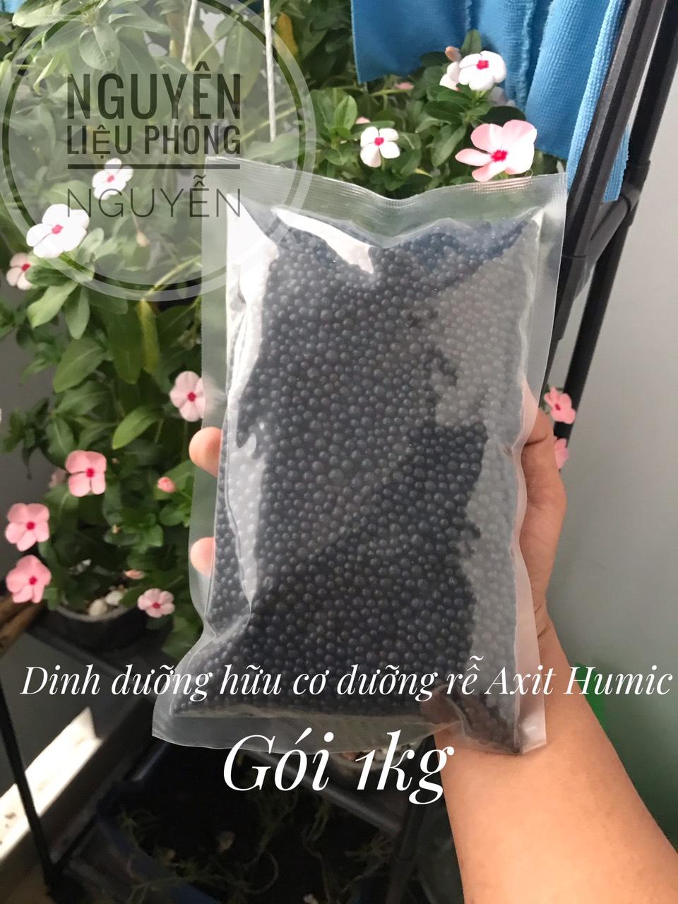 1kg-Super humic hạt dưỡng rễ tốt cây xanh lá # axit Humic hạt gói 1kg