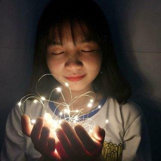Đèn Led Đom Đóm 2m và 4m Vàng Nắng Xài Pin (Ảnh Thật ) Đèn Led Trang Trí Sống Ảo thumbnail