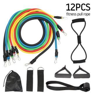 Dây đàn hồi tập Gym S1-D, bộ dây tập thể lực 5 màu - Bộ 11 chi tiết, dây tập kháng lực 100LB tiêu chuẩn thumbnail