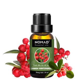 Tinh Dầu Thiên Nhiên Lộc Đề Xanh Nomad Essential Oil Blend - Canada Wintergreen thumbnail