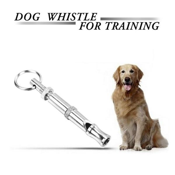 Thời trang siêu âm Pet Dog Puppy Còi âm thanh Sự vâng lời Huấn luyện viên Vòng chìa khóa (Màu: Bạc)