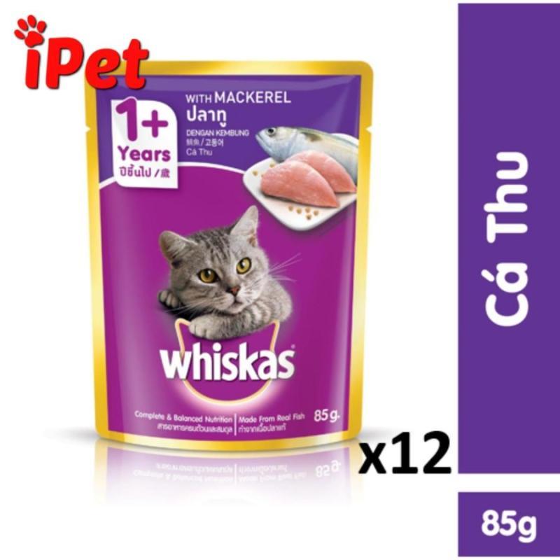 Pate Whiskas Dinh Dưỡng Vị Cá Thu Cho Mèo Lớn 85g - iPet Shop