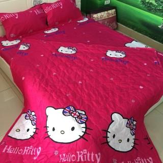 Bộ drap 4 món (1 ga +1 vỏ gối ôm+2 vỏ gối nằm 160 200cm - bộ ga 4 món - bộ ga trải giường cotton thumbnail