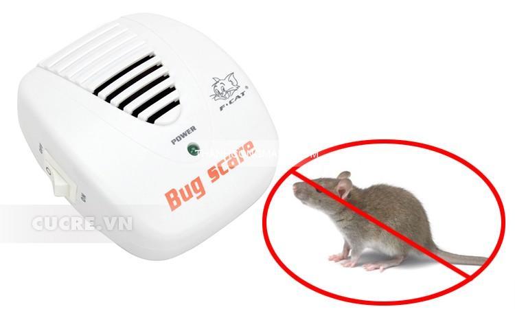 Máy đuổi chuột an toàn hiệu quả mà dễ sử dụng