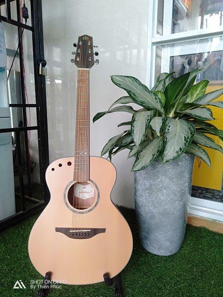 Guitar Acoustic Miwish