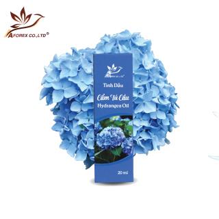 Tinh dầu Cẩm Tú Cầu nguyên chất Aforex làm thơm phòng, khử mùi, hương thơm ngọt ngào, có thể dùng với đèn xông tinh dầu thumbnail