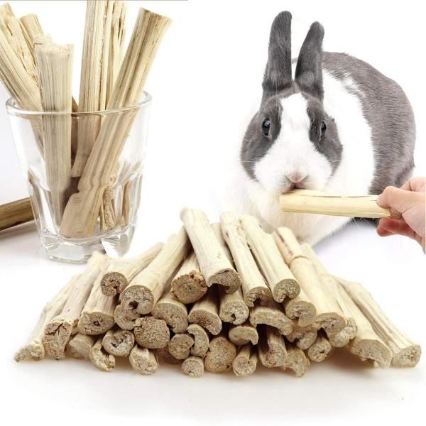 LILILIO Chuột đồng Con vẹt Sóc Làm sạch răng Thỏ Molar Tre ngọt ngào Đồ ăn nhẹ cho thú cưng Đồ chơi nhai Thanh nhánh
