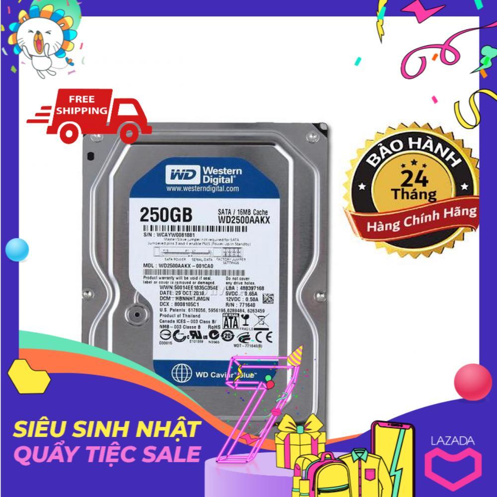 Ổ cứng gắn trong HDD WD Blue 250GB - Hàng Chính Hãng - BH 2 năm - 1 đổi 1 Nhật Bản