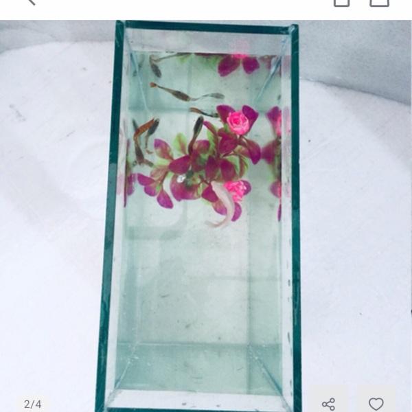 Bể cá mini 20x10x20