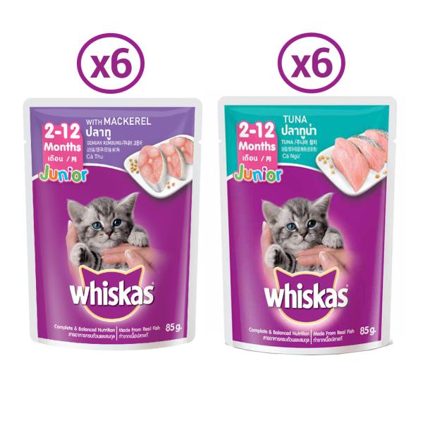 Combo 12 túi mix 2 vị thức ăn pate cho mèo con Whiskas 85g/túi