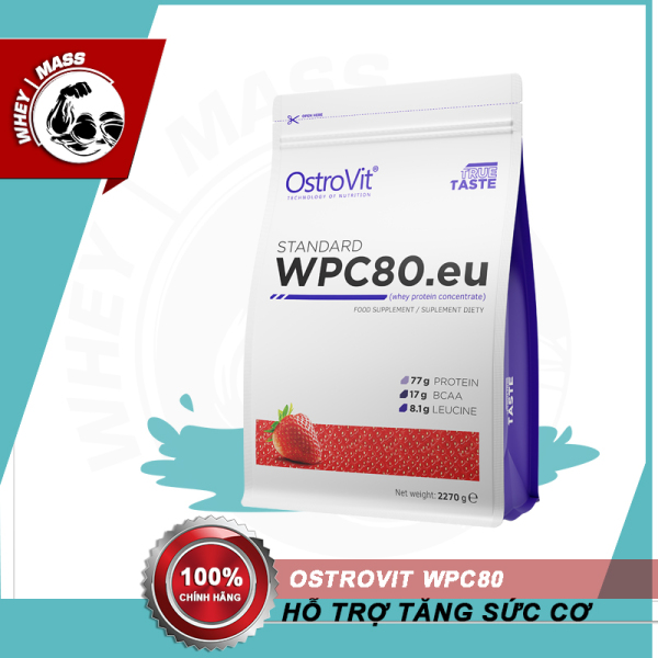 Thực Phẩm Bổ Sung Hỗ Trợ Tăng Cơ Ostrovit WPC Whey Protein Concentrate 80 2,27kg