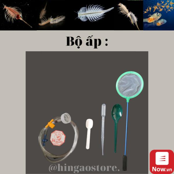 Bộ Ấp Artemia - Phụ kiện cá cảnh   Hingaostore.