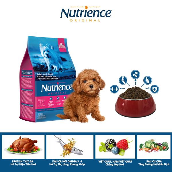 Thức Ăn Cho Chó Poodle Nutrience Original Hỗ Trợ Da Lông Bóng Mượt, Hệ tiêu Hóa, Hệ Miễn Dịch Khỏe Mạnh - Thịt Gà, Rau Củ Và Trái Cây Tự Nhiên