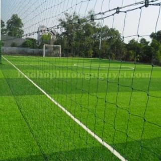 Lưới quây sân bóng, lưới chắn sân bóng đá bóng chuyền 6x40m (đặt lưới theo yêu cầu của bạn) thumbnail